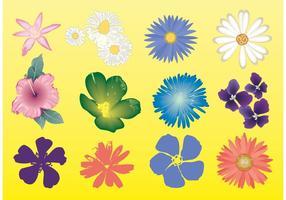 Gráficos vetoriais de flores grátis