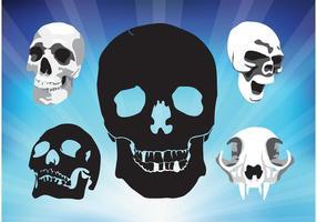Spooky Skulls Vektoren