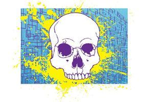 Free Skull Imagem De Stock