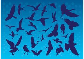 Silhuetas de pássaros voadores