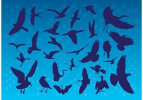 Fliegende Vögel Silhouetten