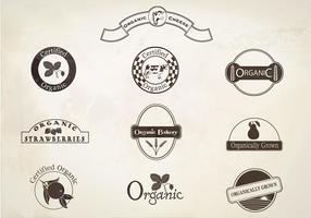 Retro etiquetas orgánicas conjunto de vectores