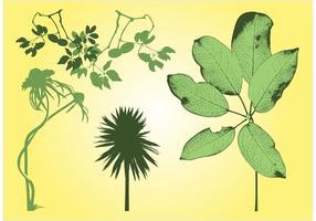 Vrije plantenvoorraad