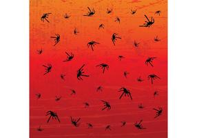 Spiders Patterns