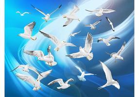 Pájaros Gratis