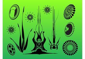 Organic Graphics