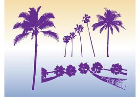 Palmbomen Silhouetten