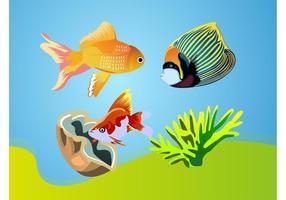 Tropical Fishes Vectors