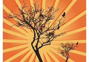 Tree Sunburst Graphics