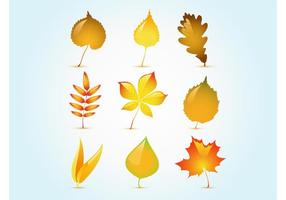 Glossy Autumn Leaf Vectors