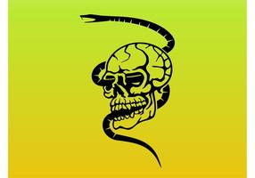 Skull and Snake Graphics