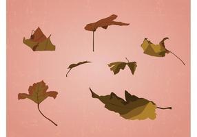 Spridna löv