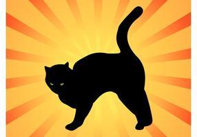 Gato doméstico negro