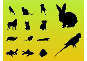 Pet Animals