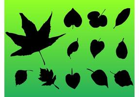 Blätterpackung