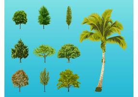 Trees Illustrations