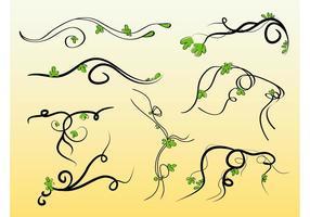 Vines Vectors