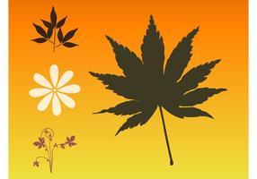 Herfstbladeren En Bloemen