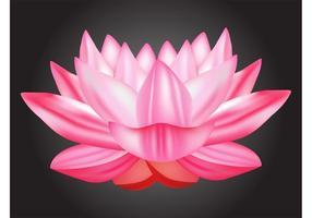 Lotus-Vektor