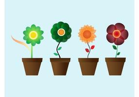 Fleurs Aux Pots