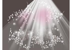 Luzes e flores