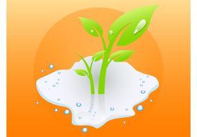 Plante humide