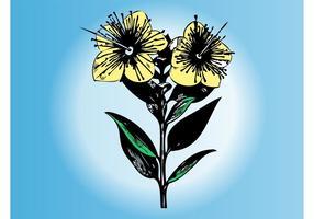 Bosquejo de la flor