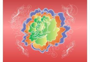 Kleurrijke Rose