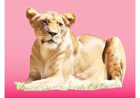 Vector femenino del león