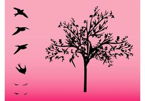 Träd Och Fåglar