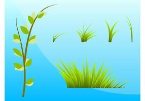 Gräs och växter