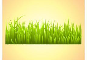 Grass-vector