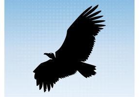 Abutre voador