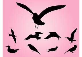Siluetas de pájaros Vectores