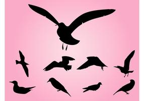 Vetores de silhuetas de pássaros