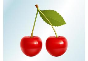 Realistic Cherries