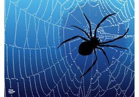 Spider Graphics