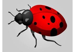 ladybug vector free vector art from vecteezy