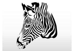 Zebra Head