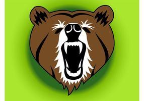 Urso irritado