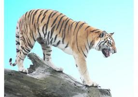 Tigre de chasse
