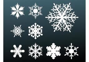 Sneeuwvlokken Footage