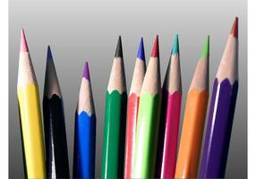 Lápices De Color Vector
