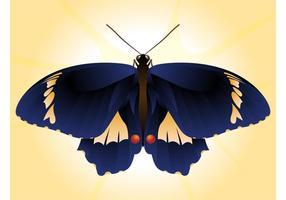 Bonito vetor borboleta