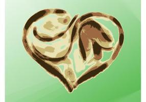Disposition du coeur