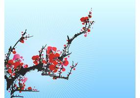 Floração da ameixa