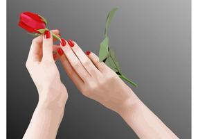 Las manos Rosa Vector