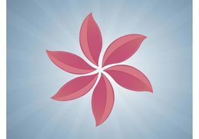 Image de fleur exotique