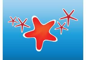 Clip Art de Starfish