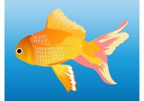 Goldfisch-Grafiken
